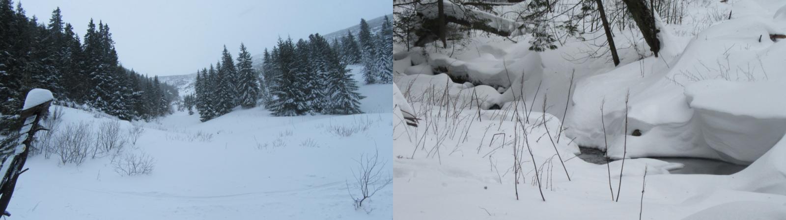 369138f9e Obr. 6: Na ceste k Jaskyni mŕtvych netopierov – vľavo (cca 1400 m n. m.) a  záveje nad Trangoškou – vpravo (cca 1200 m n. m.) dňa 27.12.2018
